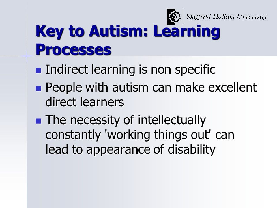 Key to Autism: Learning Processes