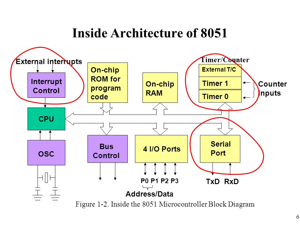Chapter 11 interrupts programming in assembly and c ppt for Architecture 8051