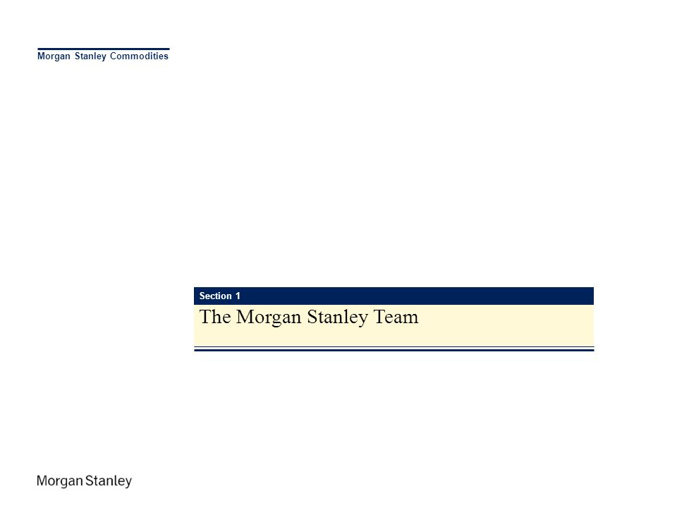 The Morgan Stanley Team
