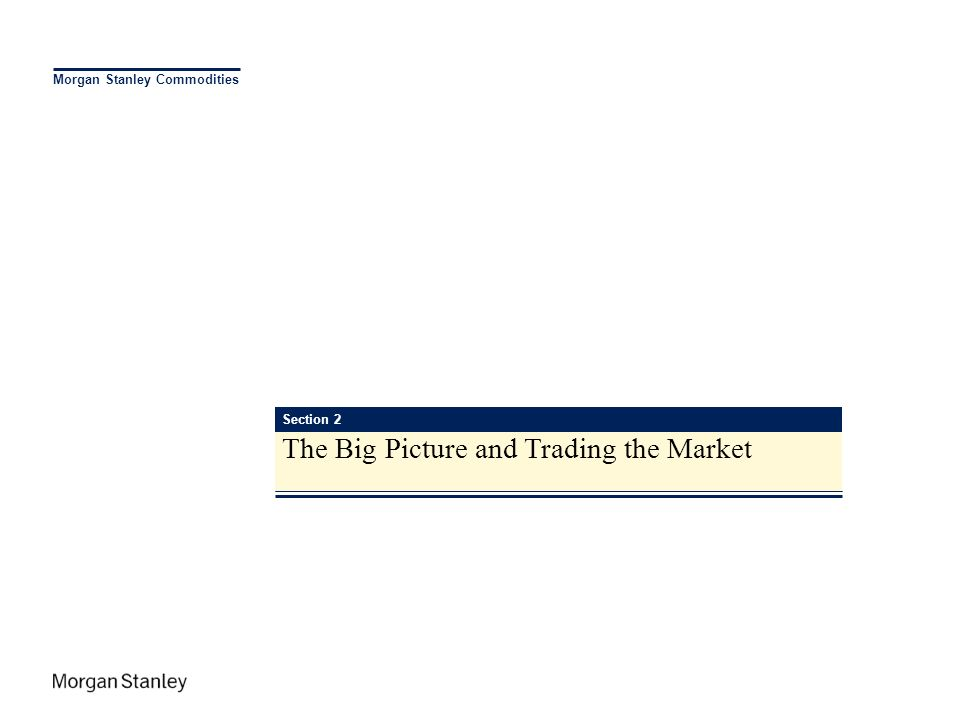 The Big Picture and Trading the Market