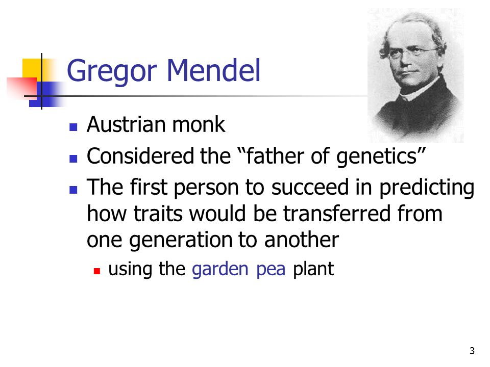 Gregor Mendel Austrian monk Considered the father of genetics