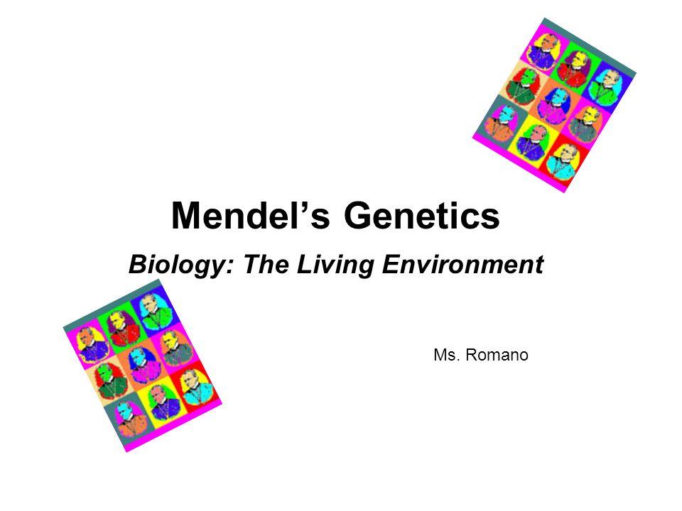 Free biology worksheets for high school
