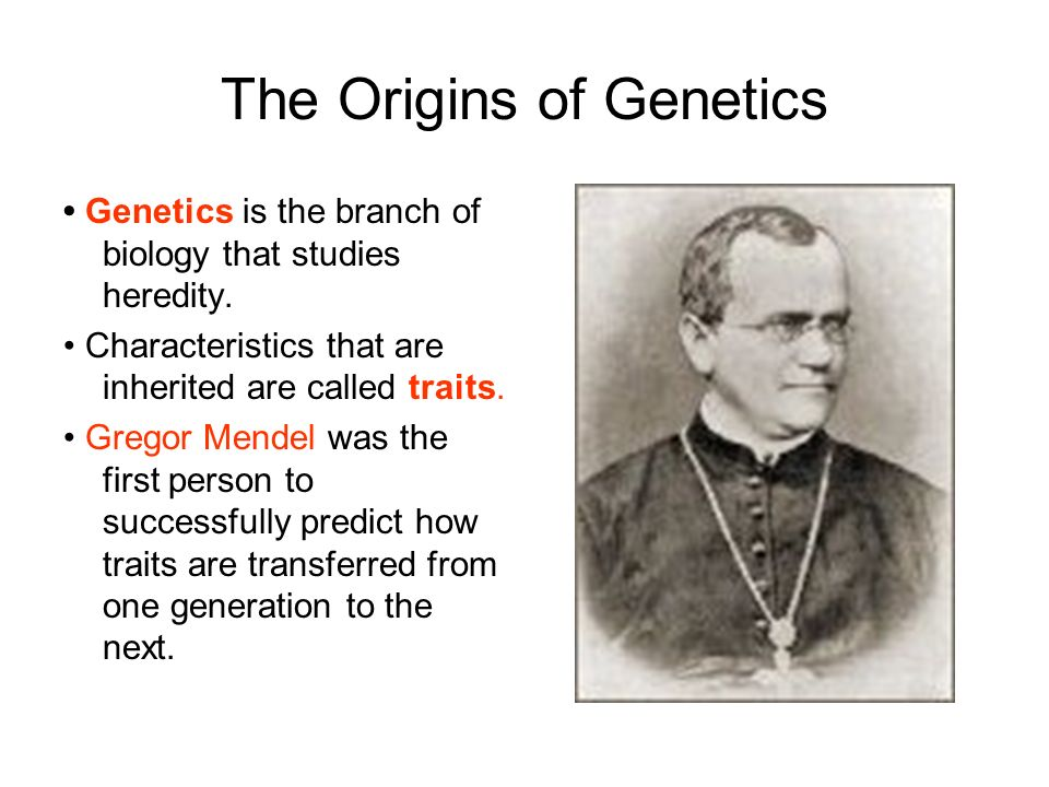 The Origins of Genetics