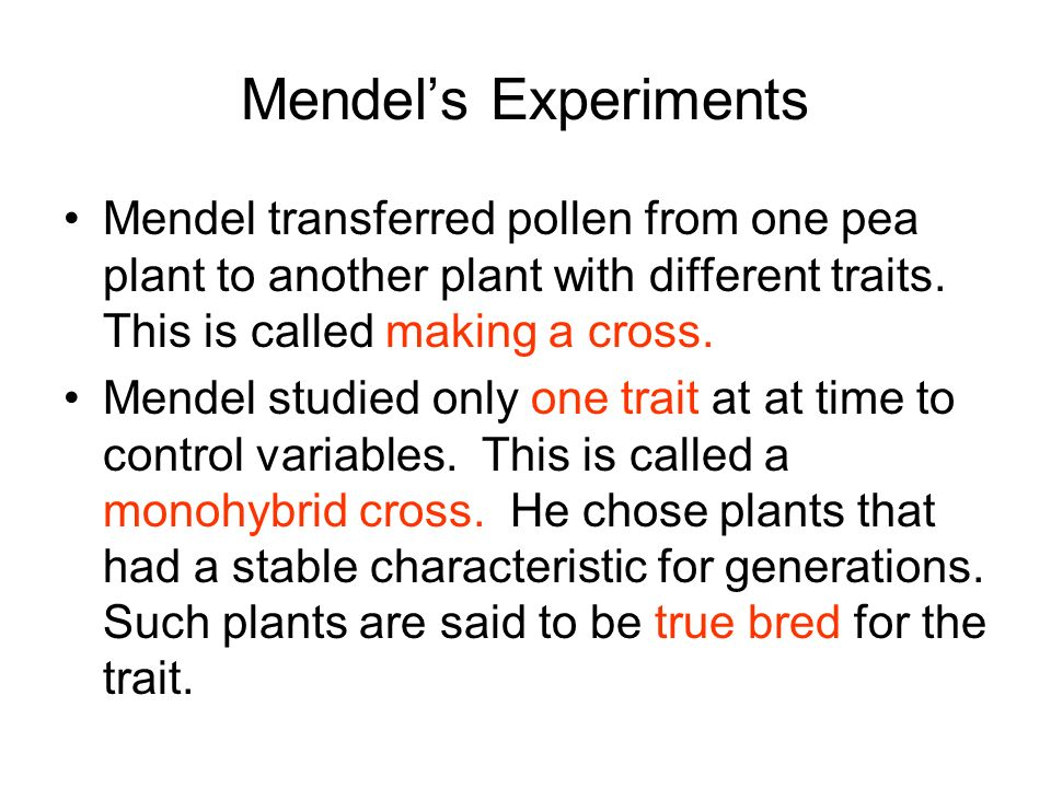 Mendel's Experiments Mendel transferred pollen from one pea plant to another plant with different traits. This is called making a cross.