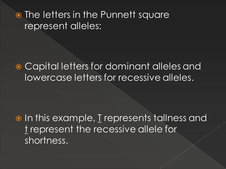 The letters in the Punnett square represent alleles: