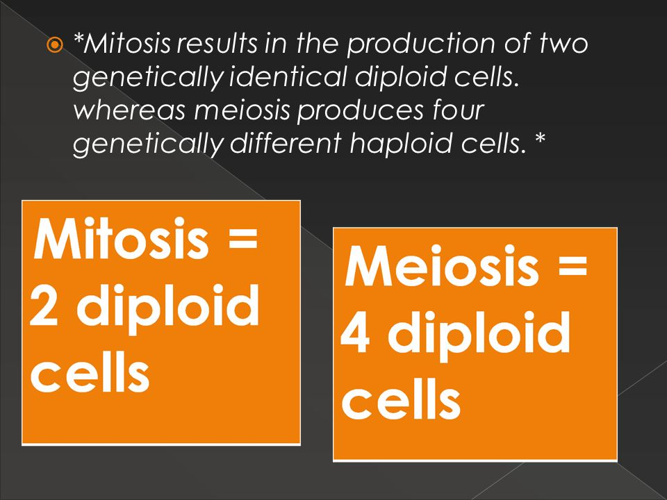 *Mitosis results in the production of two genetically identical diploid cells. whereas meiosis produces four genetically different haploid cells. *