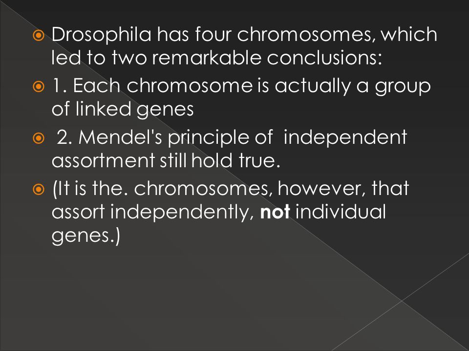 1. Each chromosome is actually a group of linked genes
