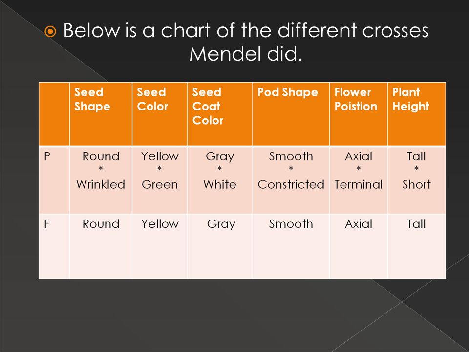 Below is a chart of the different crosses Mendel did.