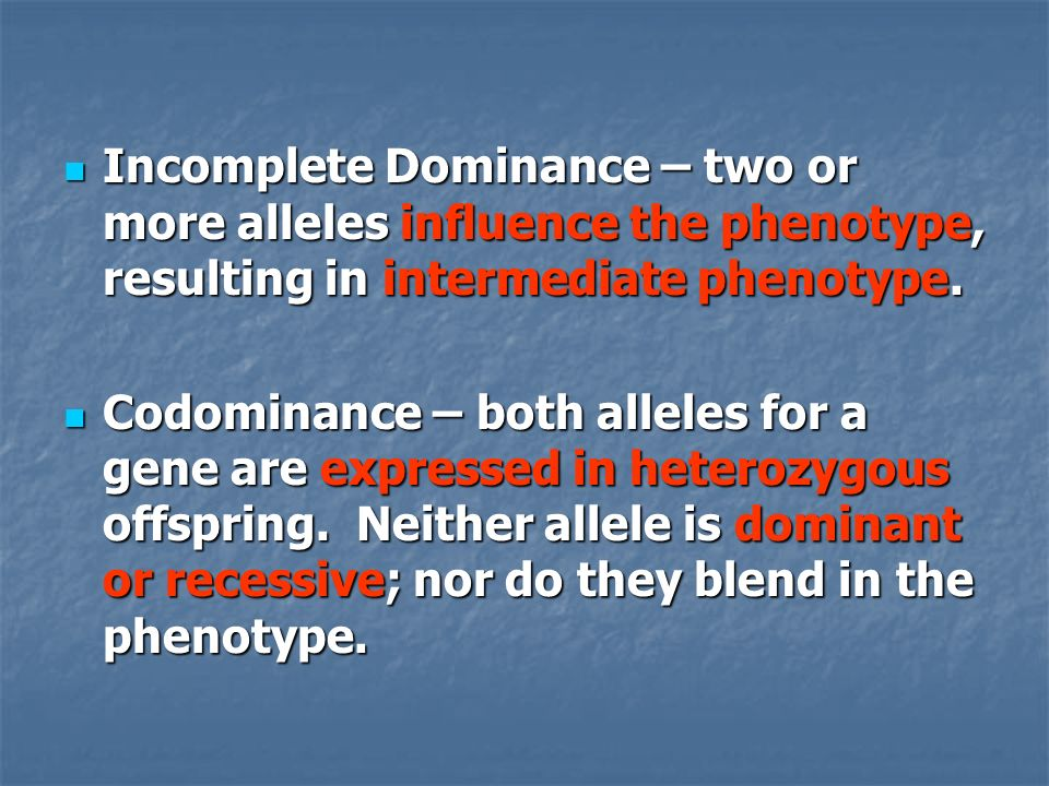 Incomplete Dominance – two or more alleles influence the phenotype, resulting in intermediate phenotype.