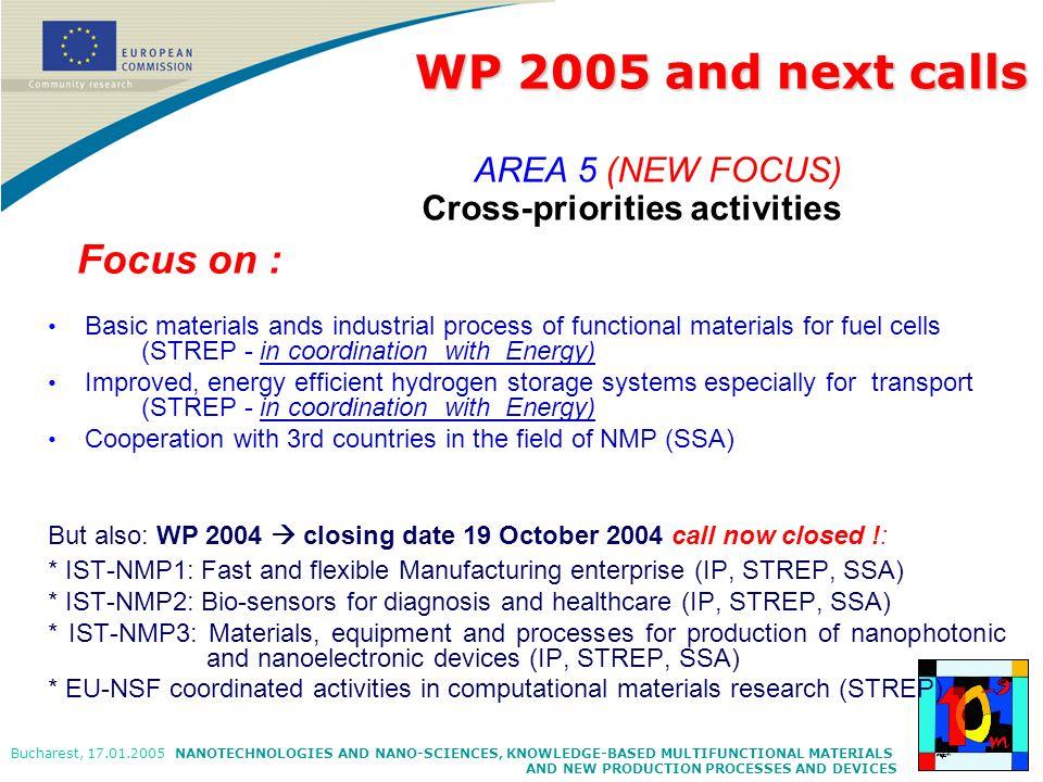 WP 2005 and next calls AREA 5 (NEW FOCUS) Cross-priorities activities