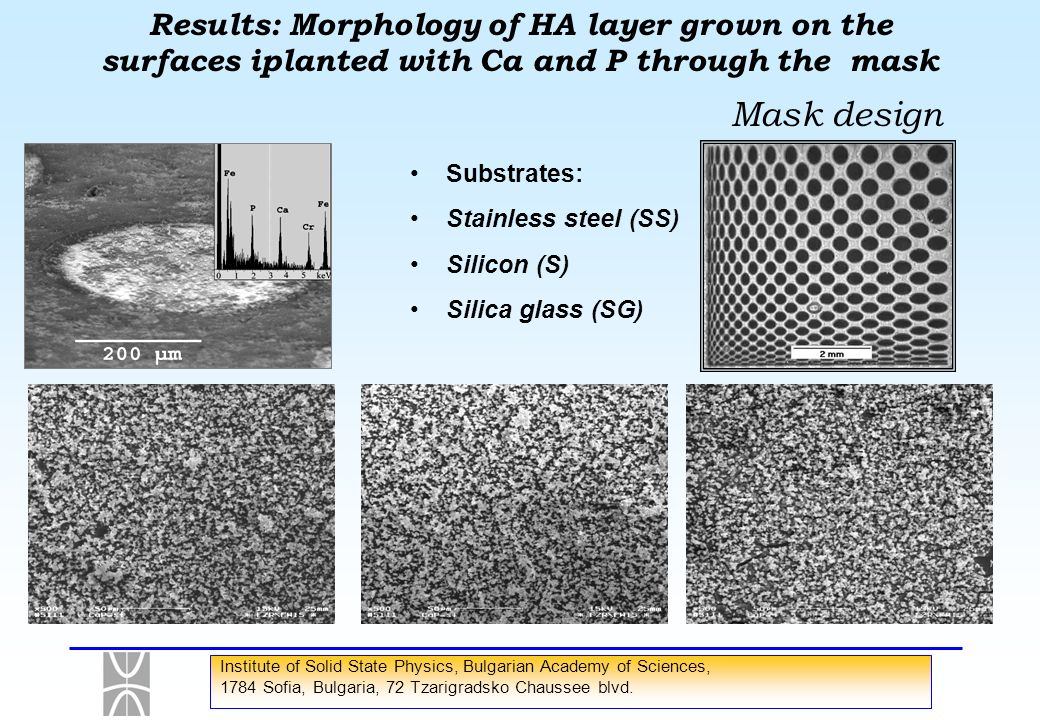 Results: Morphology of HA layer grown on the surfaces iplanted with Ca and P through the mask