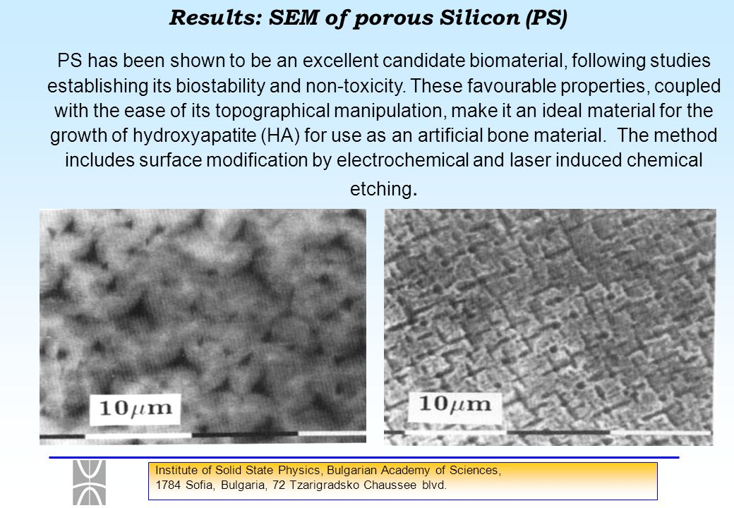Results: SEM of porous Silicon (PS)