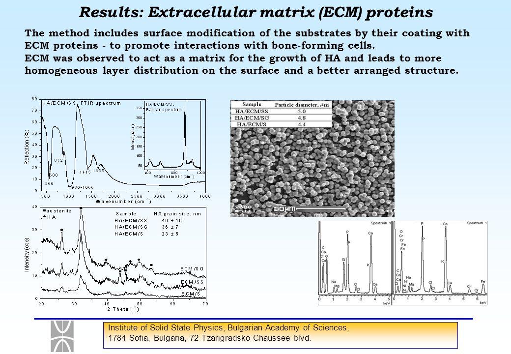 Results: Extracellular matrix (ECM) proteins
