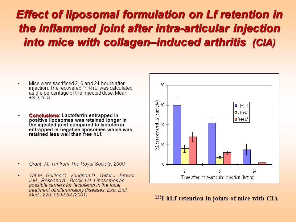 Effect of liposomal formulation on Lf retention in the inflammed joint after intra-articular injection into mice with collagen–induced arthritis (CIA)