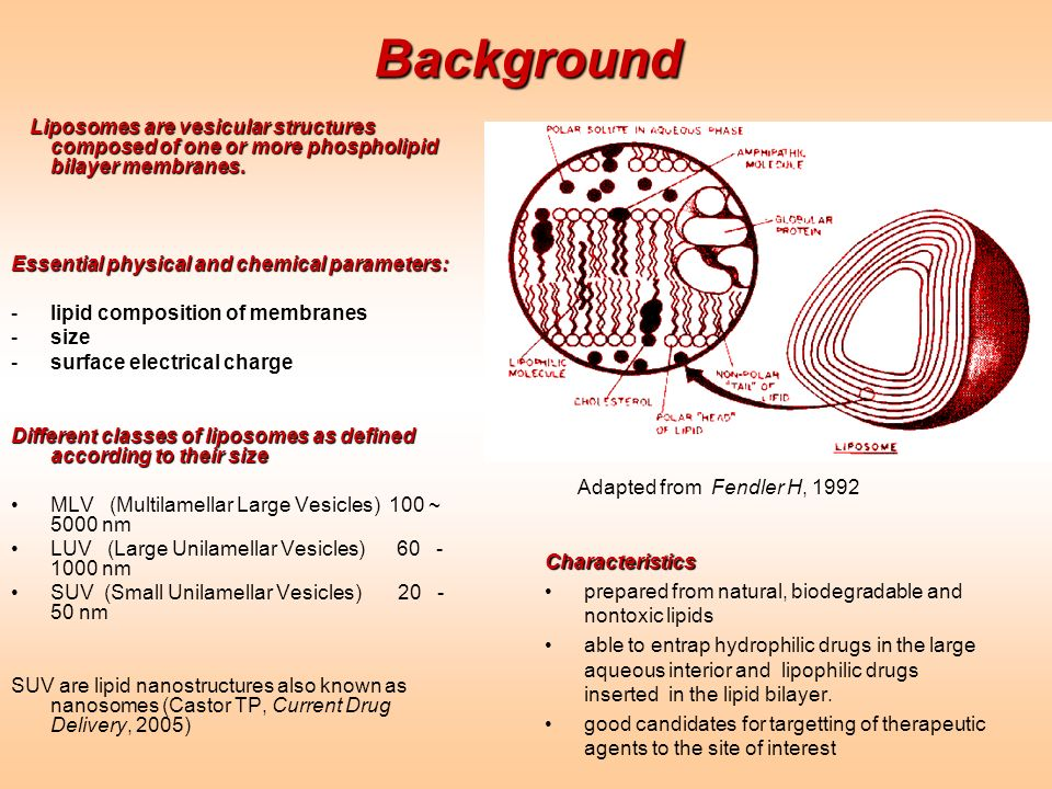 Background Essential physical and chemical parameters: