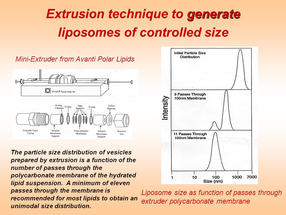 Extrusion technique to generate liposomes of controlled size