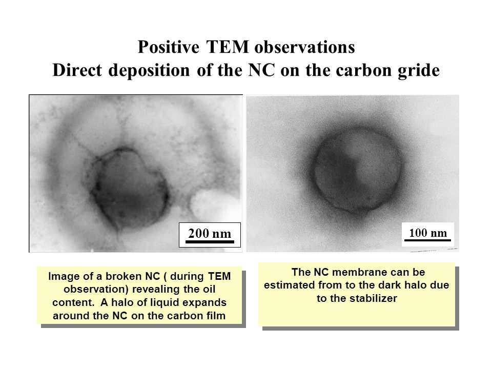 Positive TEM observations Direct deposition of the NC on the carbon gride