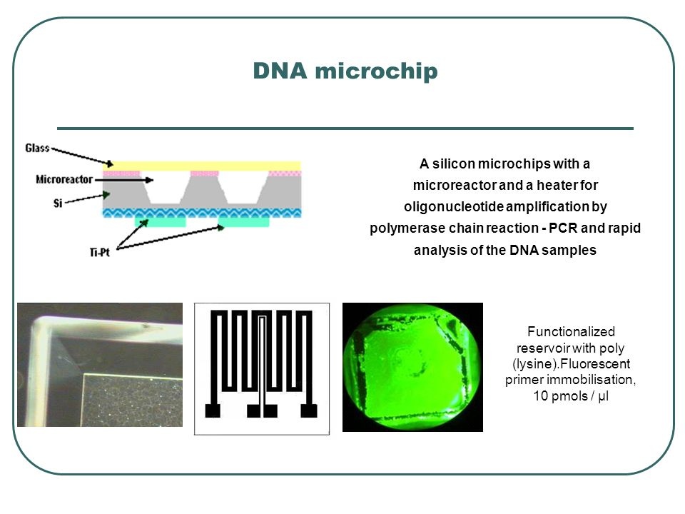 A silicon microchips with a