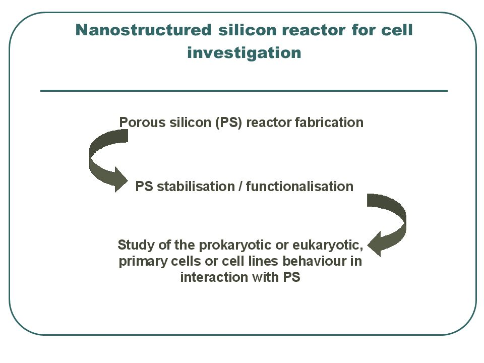 Nanostructured silicon reactor for cell investigation
