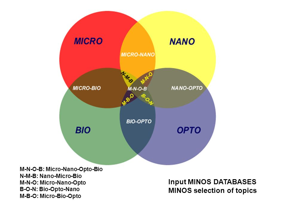 MINOS selection of topics