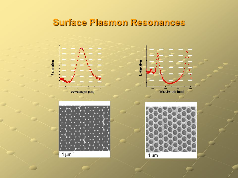 Surface Plasmon Resonances