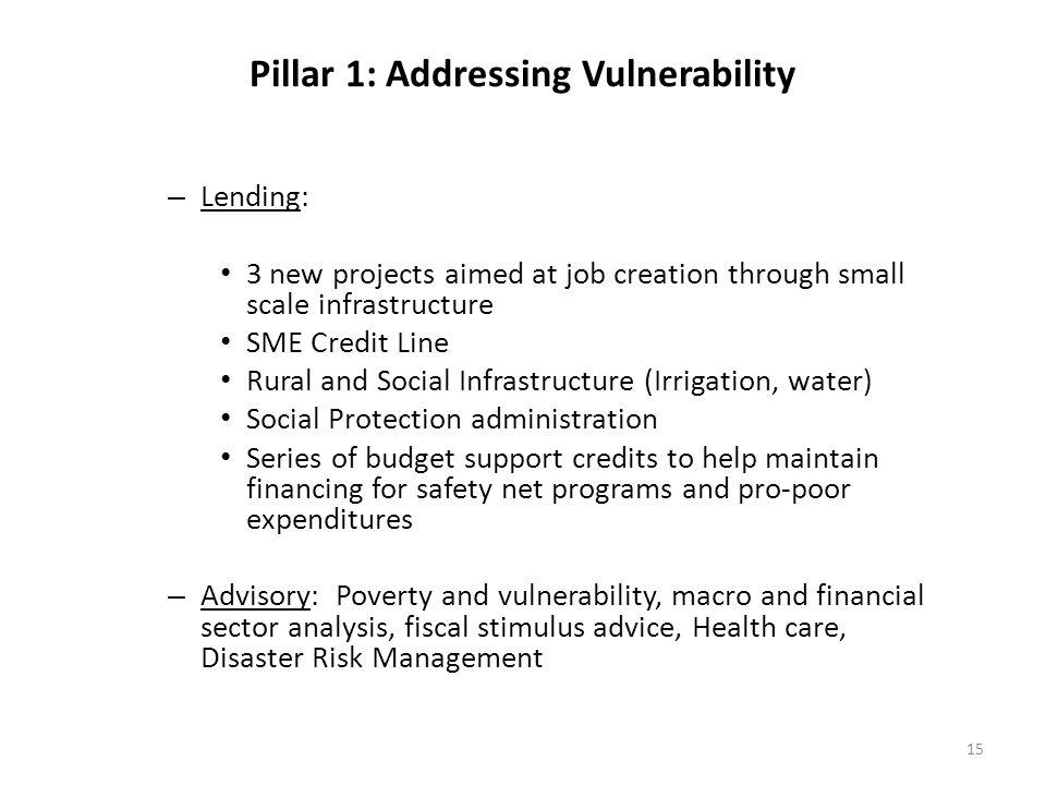 Pillar 1: Addressing Vulnerability