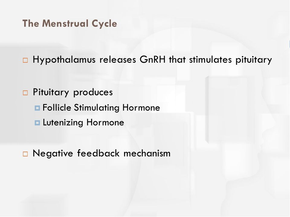 Hypothalamus releases GnRH that stimulates pituitary
