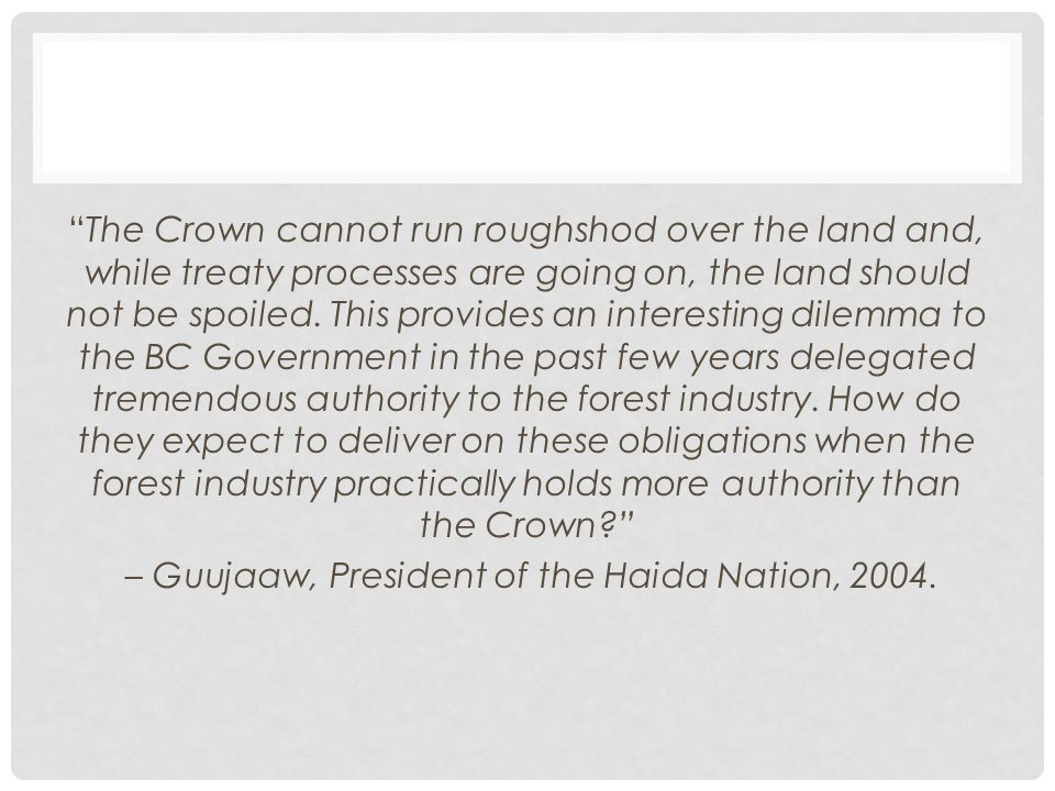 The Crown cannot run roughshod over the land and, while treaty processes are going on, the land should not be spoiled.