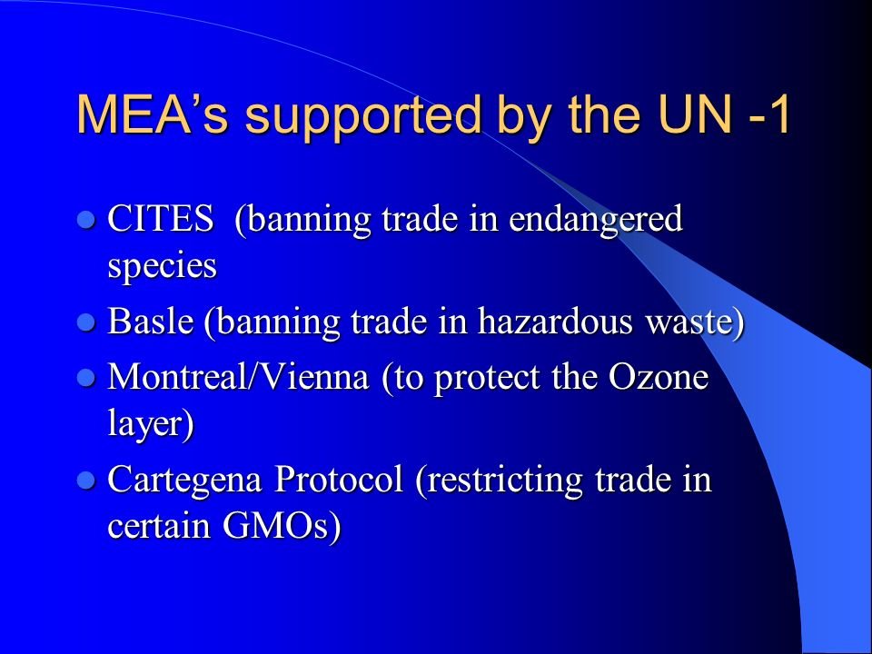 MEA's supported by the UN -1
