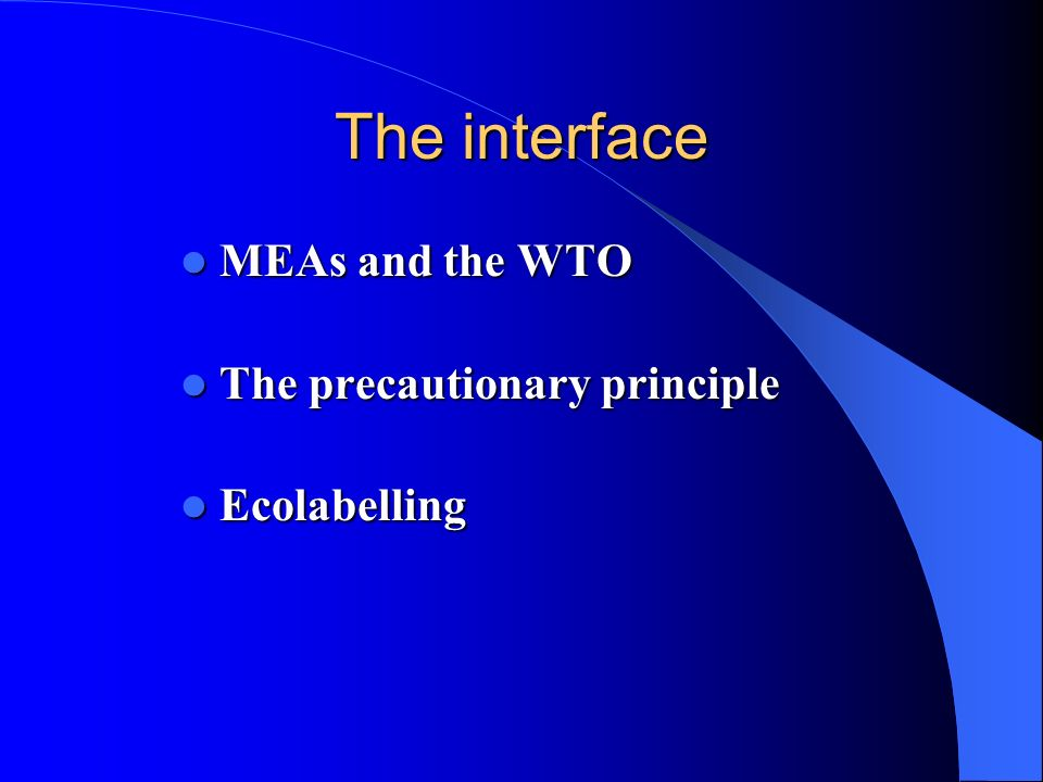 The interface MEAs and the WTO The precautionary principle