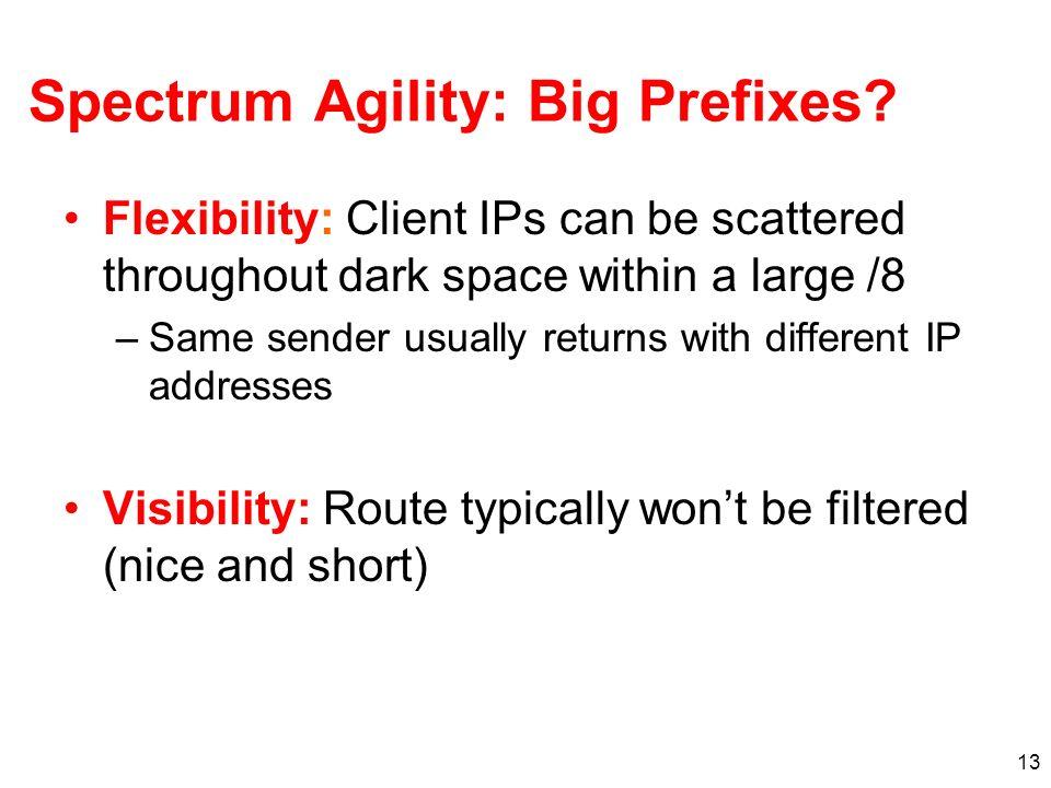 Spectrum Agility: Big Prefixes
