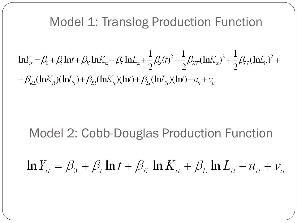 Model 1: Translog Production Function