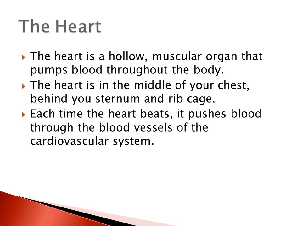 how is blood pumped throughout the Blood pressure (bp)  the volume of blood pumped from the heart with each beat (stroke volume) is lower this lowers cardiac output and reduces bp and flow rate.