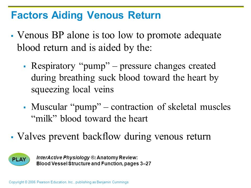 Factors Aiding Venous Return
