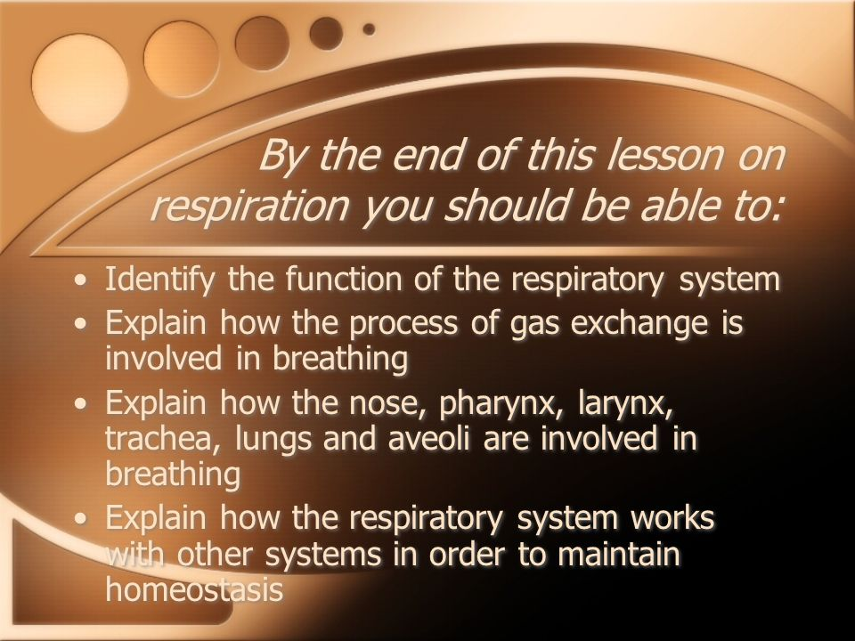 By the end of this lesson on respiration you should be able to: