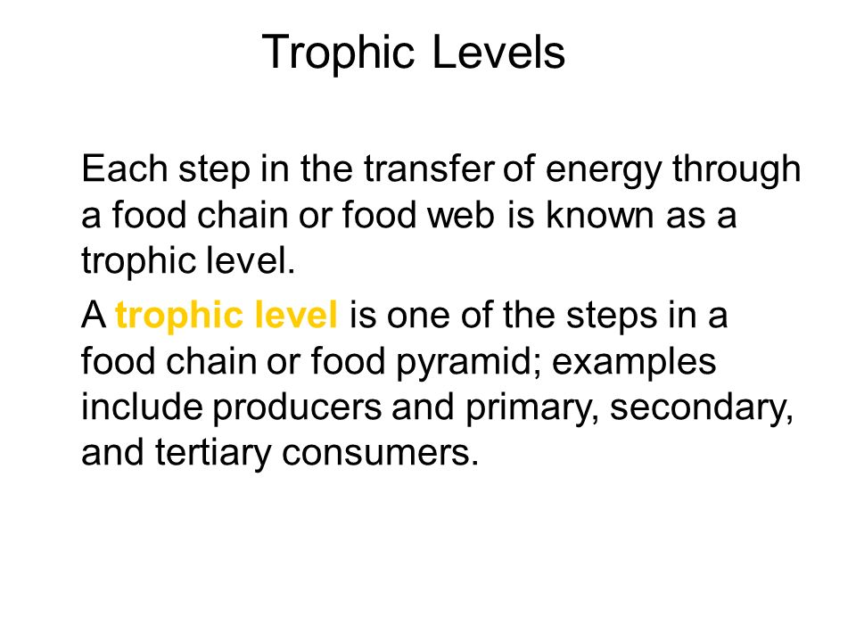 Trophic Levels Each step in the transfer of energy through a food chain or food web is known as a trophic level.