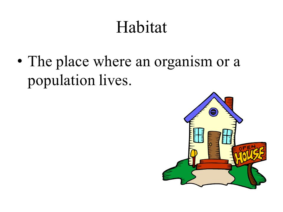 Habitat The place where an organism or a population lives.