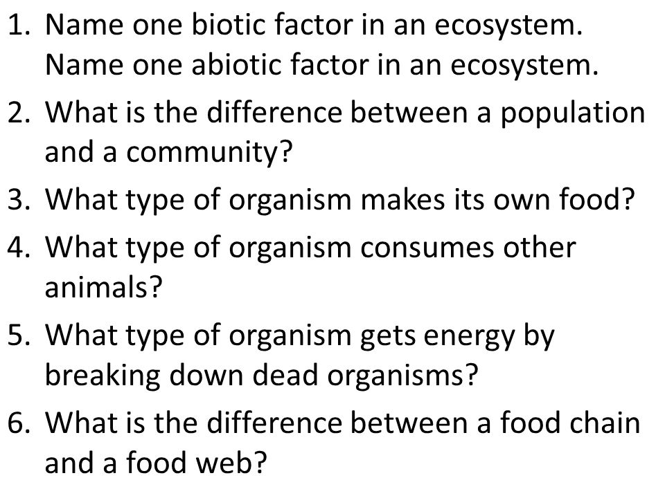 Name one biotic factor in an ecosystem