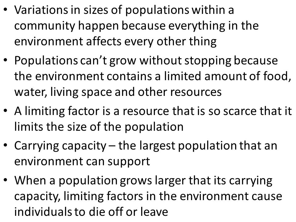 Variations in sizes of populations within a community happen because everything in the environment affects every other thing