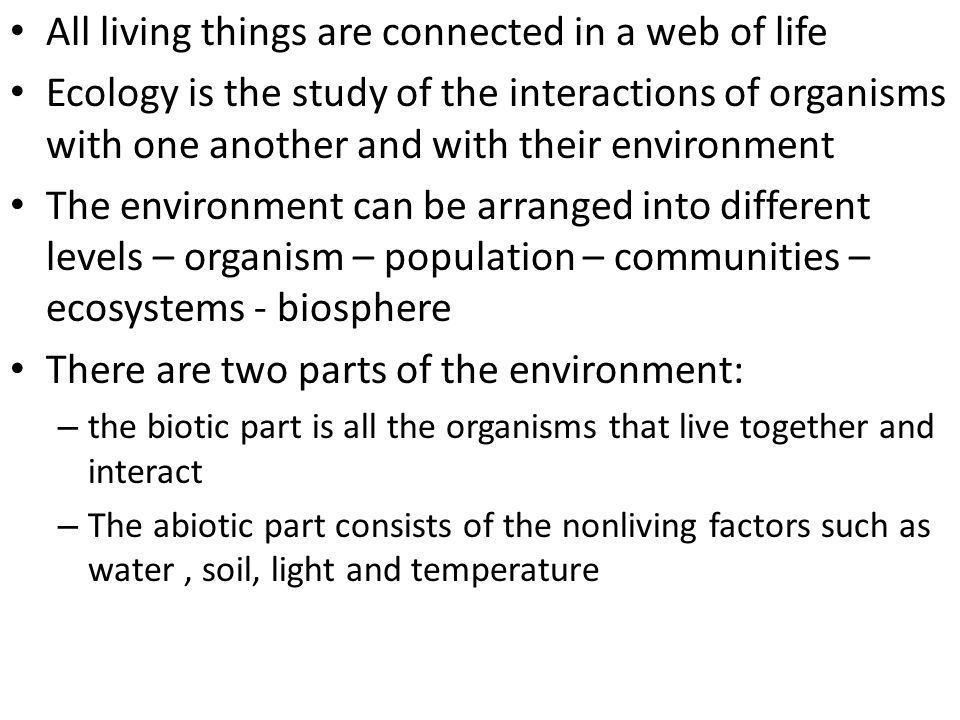 All living things are connected in a web of life