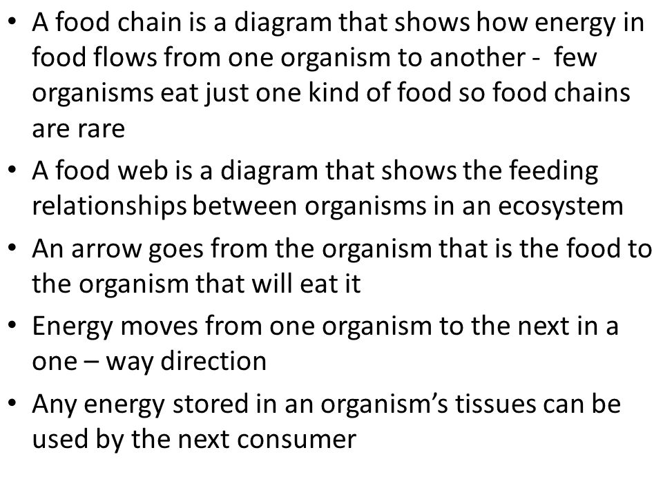 A food chain is a diagram that shows how energy in food flows from one organism to another - few organisms eat just one kind of food so food chains are rare
