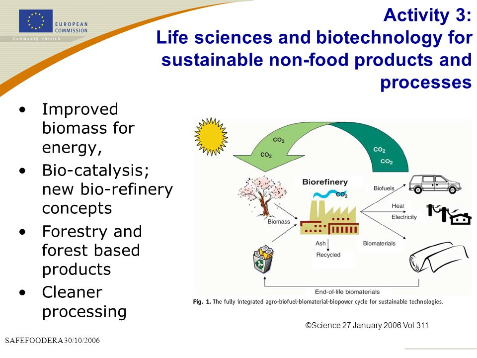 Activity 3: Life sciences and biotechnology for sustainable non-food products and processes