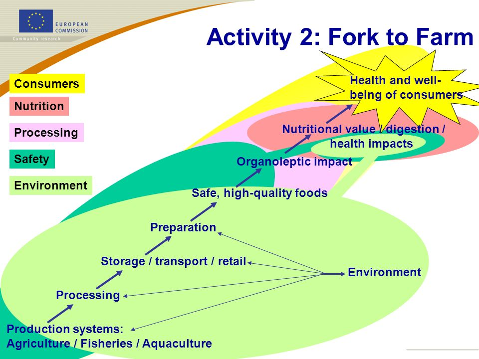 Activity 2: Fork to Farm Health and well- Consumers being of consumers