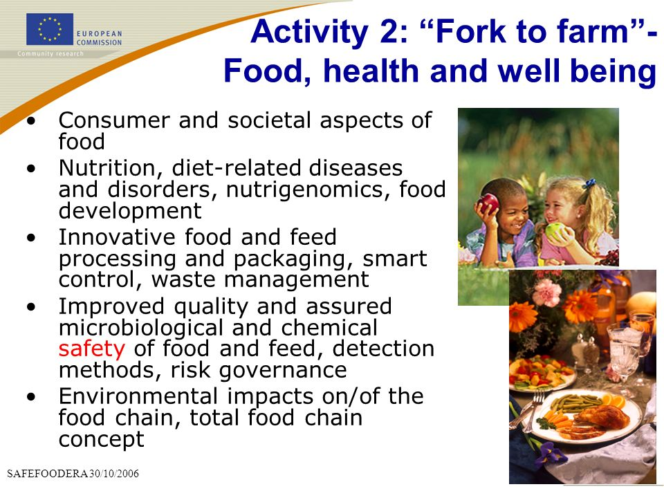Activity 2: Fork to farm - Food, health and well being