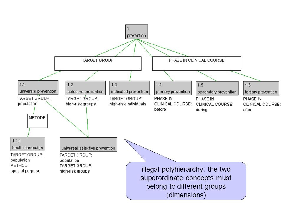 illegal polyhierarchy: the two superordinate concepts must belong to different groups (dimensions)