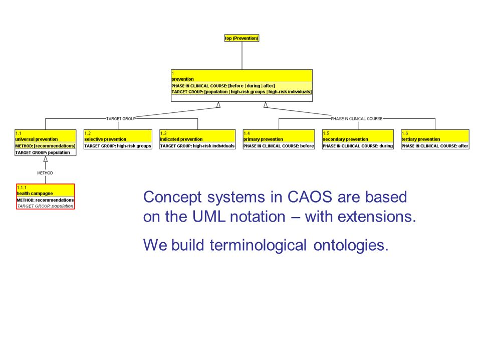 Concept systems in CAOS are based on the UML notation – with extensions.