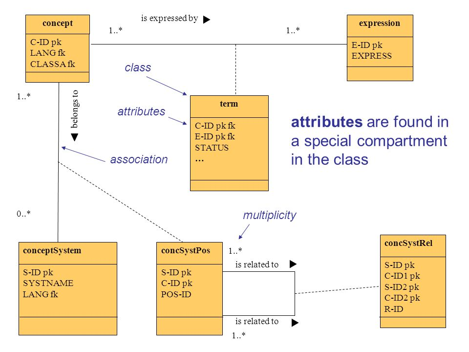 attributes are found in a special compartment in the class