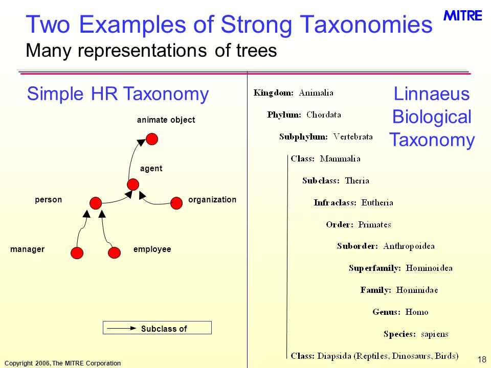 Two Examples of Strong Taxonomies Many representations of trees