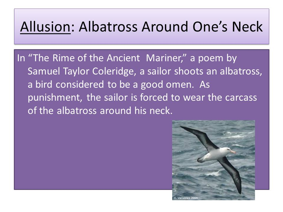 From Rime Of The Ancient Mariner Ppt Video Online Download