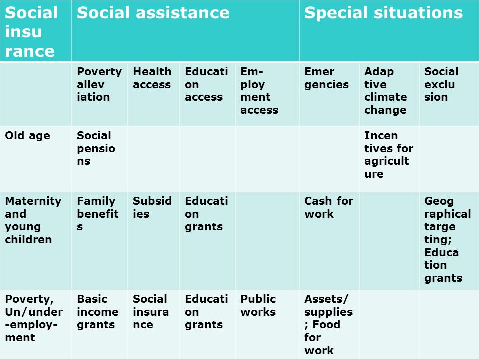 Social insu rance Social assistance Special situations Poverty allev